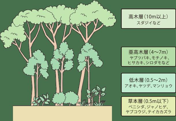ゆるっと公園ガイド Vol.1<解説編> | ソトイコ! | 肺がんとともに生きる
